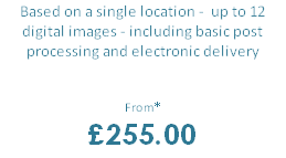 Based on a single location -  up to 12 digital images - including basic post processing and electronic delivery